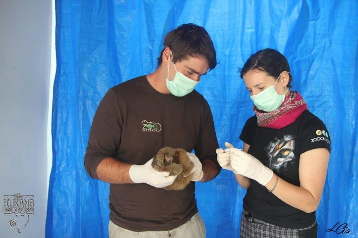 Při příjmu do záchranného centra podstupují outloňové důkladnou veterinární prohlídku.