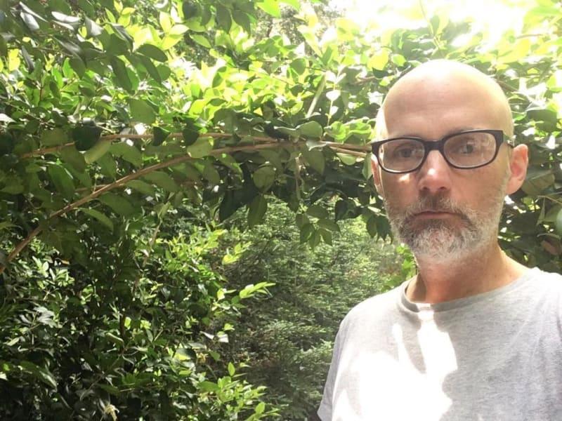 K přeměně dvorku na lesík Mobyho inspiroval úbytek populací opylovačů.