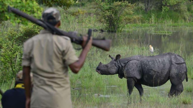 Se zbraní v ruce - takové ochrany si užívají zdejší nosorožci.