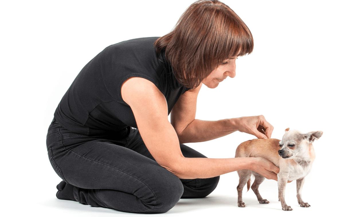 Andrea Dunová terapeutka a lektorka