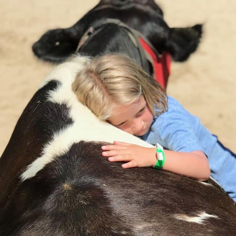 """V azylu pro """"hsopodářská"""" zvířata Gentle Barn nachází útočiště zvířata i lidé. Credit: Gentle Barn"""