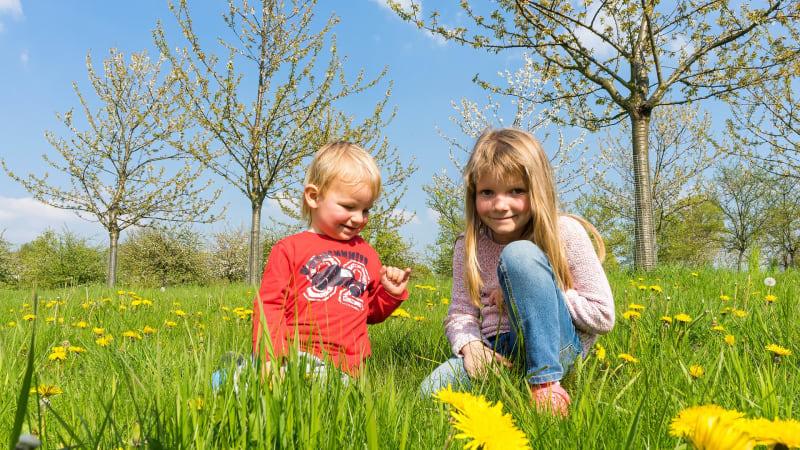 Jste s dětmi doma a přemýšlíte, jak je zabavit? Máme pro vás několik tipů!