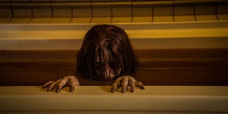 8. Nenávist (tržby: 49 milionů dolarů, rozpočet: 10 milionů dolarů) - Návrat hororové série s prokletou dívkou Kayako nedopadl nejhůř. Její americký rozjezd z roku 2004 nicméně vydělal čtyřnásobek toho, co aktuální prequel.