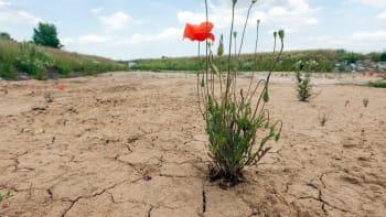 Pětisetleté sucho nehrozí. Deštivý rok a zimní sníh dokázaly naplnit podzemní vody