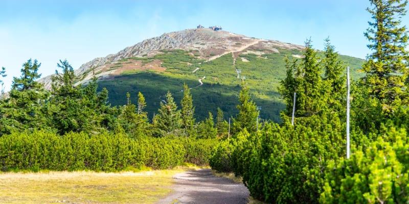 Krkonoše byly prohlášeny národním parkem 17. května roku 1963.