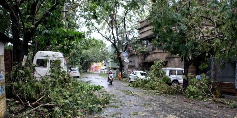 Kvůli silnému větru popadaly stromy.