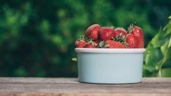 Začala sezóna samosběru jahod: Majitelé plantáží zvýšili ceny až o třetinu