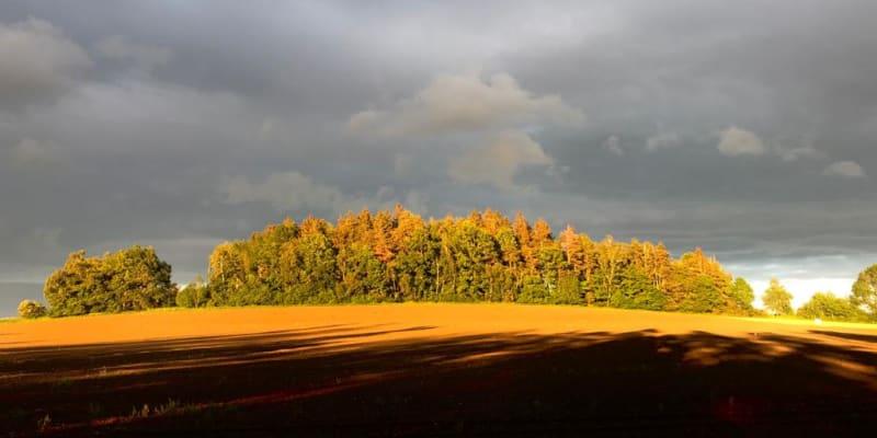 Příroda před bouří