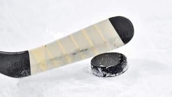 NHL zná datum svého restartu. Proběhne za přísných hygienických podmínek