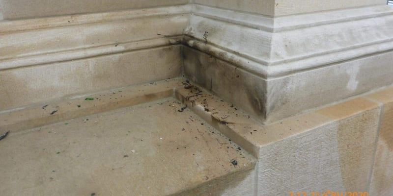 Mariánský sloup byl poškozen od kouře a sazí.