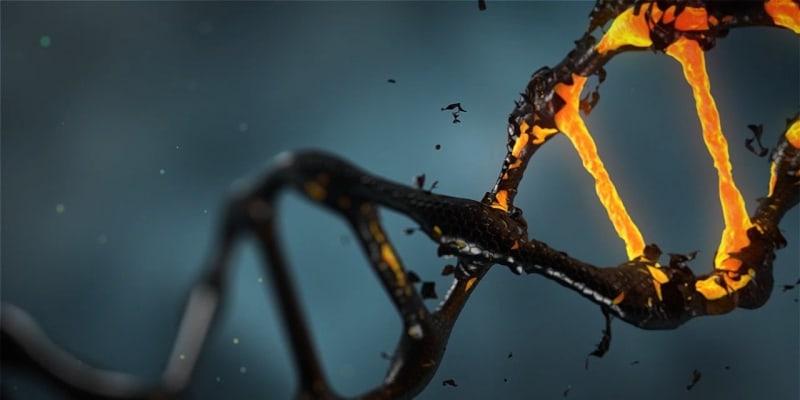 Viry mohou ukrást náš genetický kód a přepsat ho tak, aby vnikly nové geny. Zdroj:  The Mount Sinai Hospital / Mount Sinai School of Medicine
