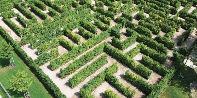 Labyrint v Mirakulu