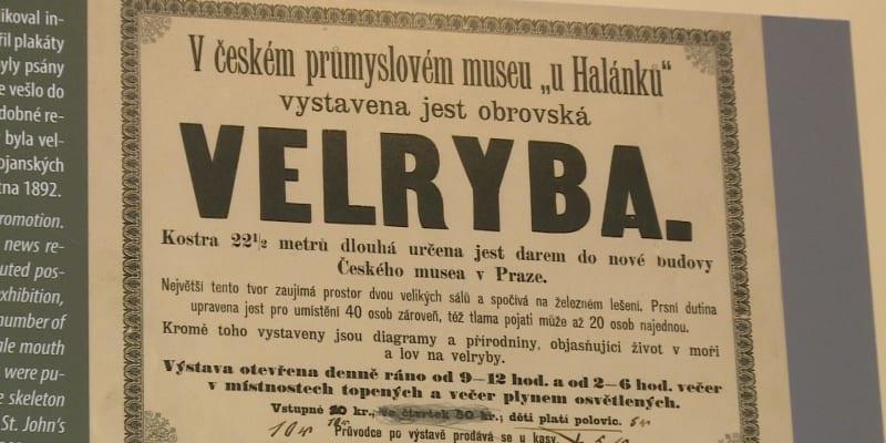 Inzerát, který lákal na úplně nový pražský exponát.