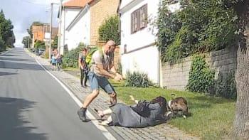 Muži, který střelbou zahnal útočícího staforda, nehrozí postih. Majiteli psa ano