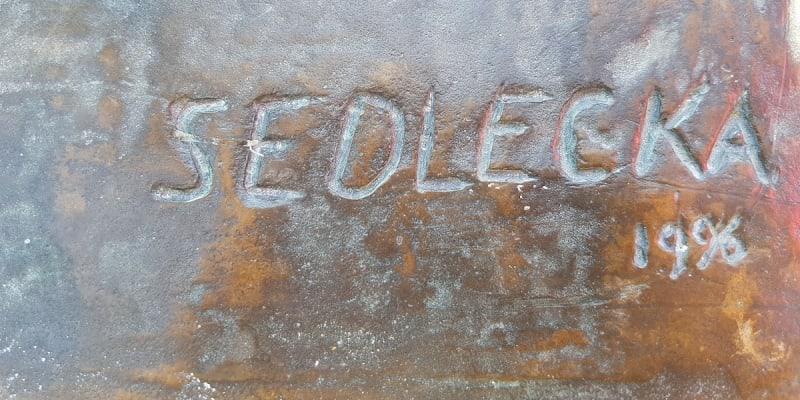 Jméno české sochařky Ireny Sedlecké na soše Freddieho Mercuryho (Zdroj: Facebook / Petr Štěpánek)