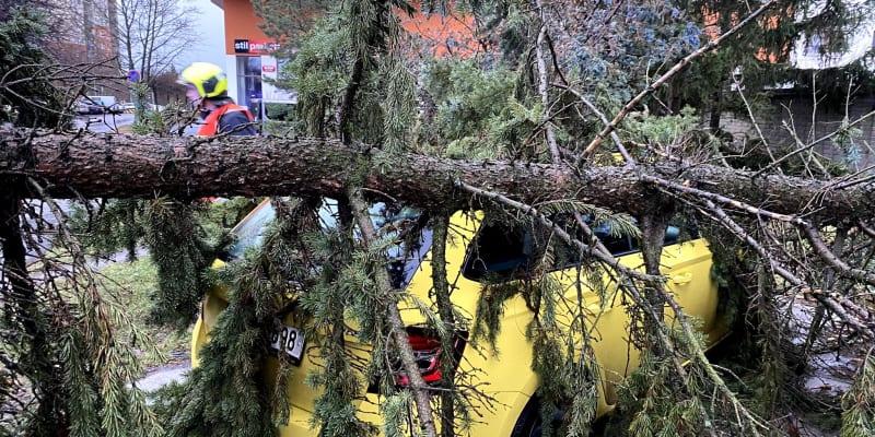 V Praze na Chodově a v Hloubětíně spadly stromy na zaparkovaná auta.