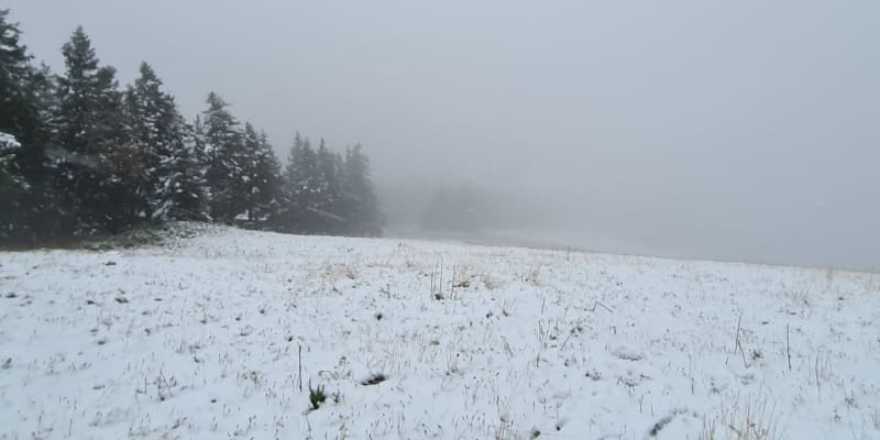 První sníh v sobotu napadl v horních polohách Šumavy a Krušných hor.
