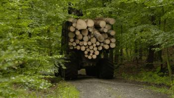 Policisté na Vysočině si posvítili na kamiony se dřevem. Jsou přetížené a ničí silnice