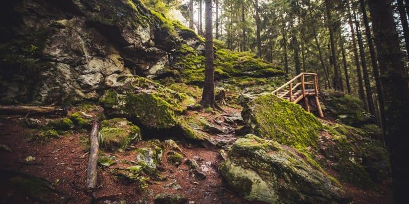 """Kamenitá cesta na vyhlídku """"Rolandův kámen"""""""
