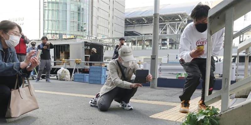 Lidé si v Ósace chodili fotografovat ředkev vzdorující asfaltu. (foto: Twitter/wrathofgnon)