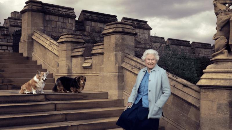 Další smrt v královské rodině. Alžběta II. truchlí, zemřel jí milovaný pes Vulcan