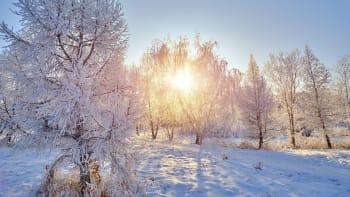 Česko zasáhly extrémní mrazy, bylo až -26 stupňů. V novém týdnu přijde obleva
