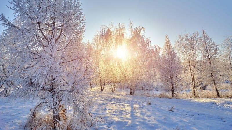 Česko zasáhly extrémní mrazy, bylo až -27 stupňů. V průběhu týdne se výrazně oteplí