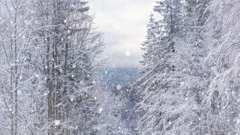 Rekordní zima, hlásí meteorologové. O víkendu bude sněžit, na slunce zapomeňte