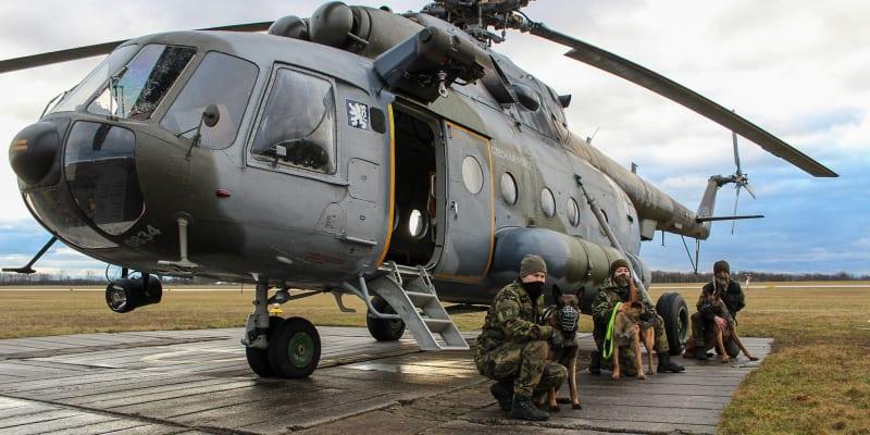 Psi se nesmějí bát střelby ani hluku z letadel nebo vrtulníků, píše Armáda ČR.