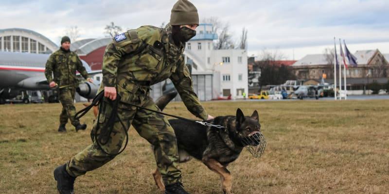 Během takzvané odborné kynologické přípravy si psovodi a psi zkoušejí nejen zadržení pachatele v budovách, štěkání na povel, reakci na střelbu, ale například i pohyb na různých površích: parketách, dlažbách či linoleu.