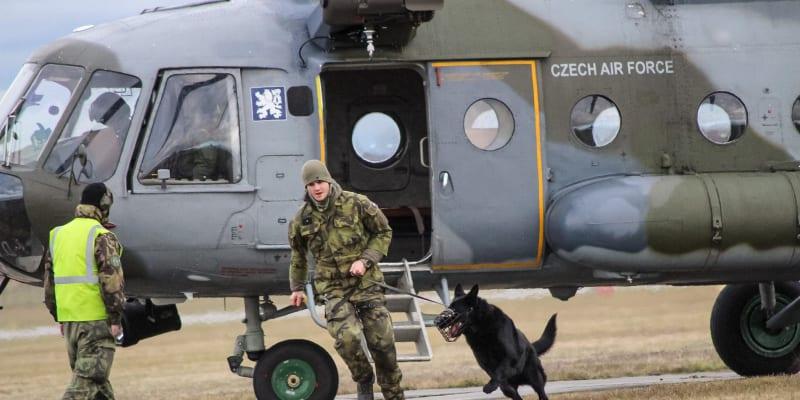 Pro ostrahu vojenských objektů jsou nejvhodnějšími kandidáty němečtí či belgičtí ovčáci.
