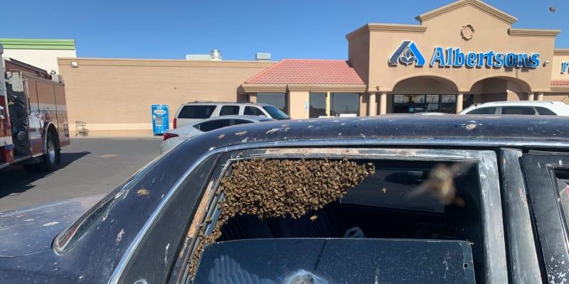 V Novém Mexiku se do zaparkovaného auta dostal roj včel.
