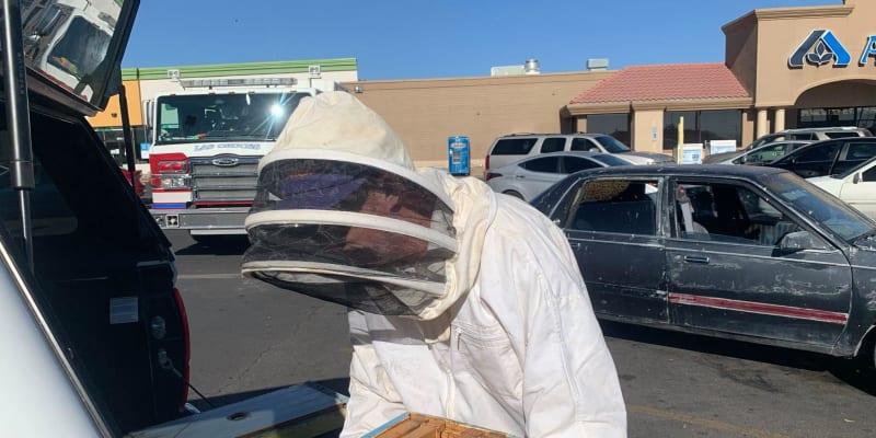 Hasič a příležitostný včelař Jesse Johnson přemístil včely z parkoviště supermarketu na svůj pozemek.