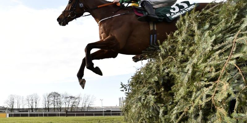 Rachael Blackmoreová překonává na koni Minella Times poslední překážku Velké národní 2021.