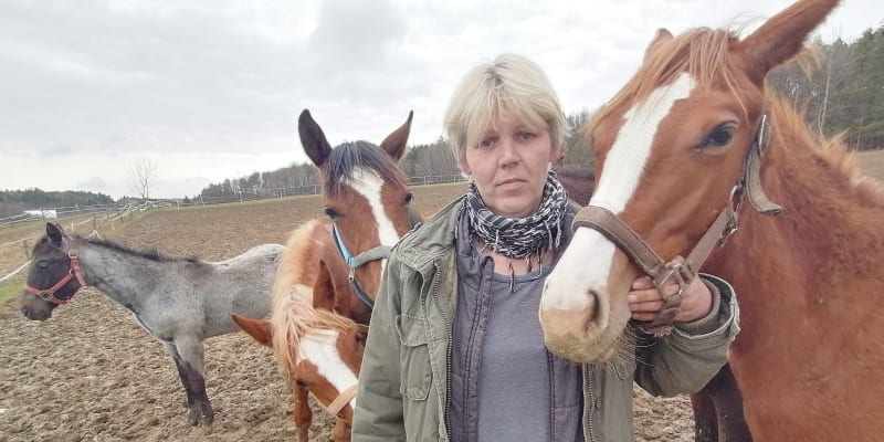 Hřebčín nad muničním areálem. Olga Stehlíková říká, že si není úplně jistá, zda je tady pastva pro koně bezpečná.