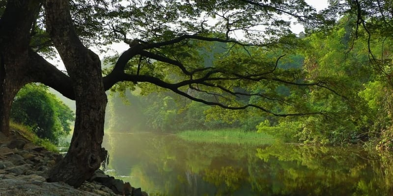 Řeka Zdobnice vyplavila neznámého utonulého muže. (Ilustrační foto)