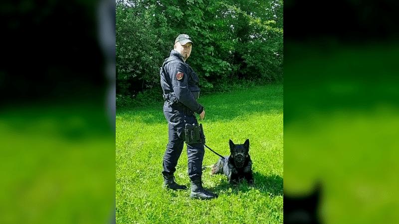 Policejní pes Rocky hrdinou. K rozbití gangu na Královéhradecku mu stačila kšiltovka