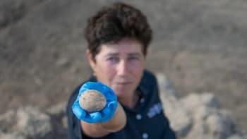 Archeologové v Izraeli nalezli 1000 let staré vejce. Leželo v odpadní jímce