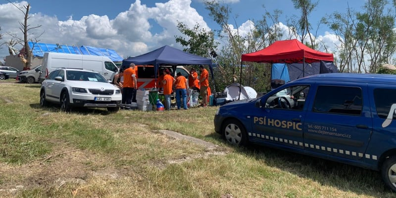Pomáhají veterináři z Prahy i širokého okolí zasažených obcí.
