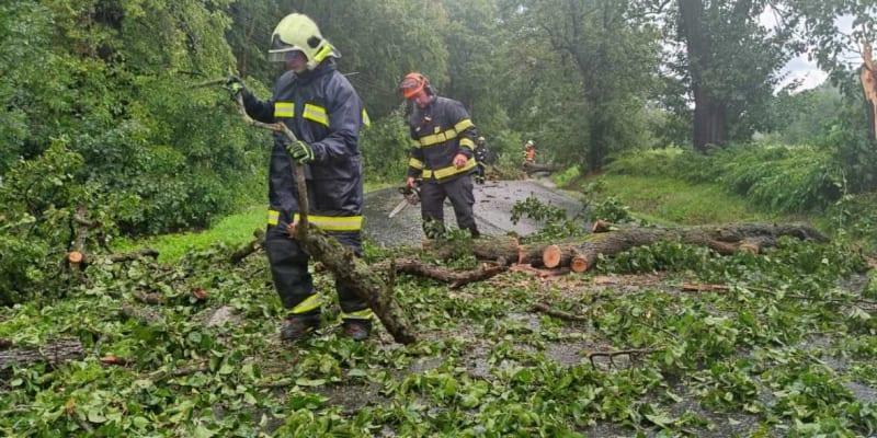 Voda natekla do sklepů na několika místech ve městě, v ulici U Koupaliště zatopila viadukt. V Boleticích nad Labem, části Děčína, spadly dva stromy na vozovku.