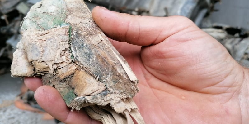Dřevo nalezené v motoru, do stroje se dostalo při pádu letadla.