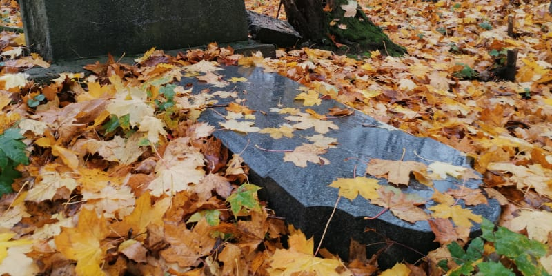 Zdevastované náhrobky na německém hřbitově v Krnově-Chomýži. Listopad 2020