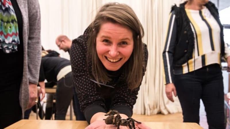Máte strach z pavouků? Nebojte se, s největší pravděpodobností arachnofobií netrpíte!