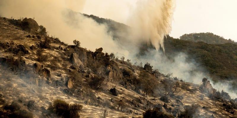 Hašení požárů v Kalifornii. Oheň ohrožuje i obří sekvojovce.