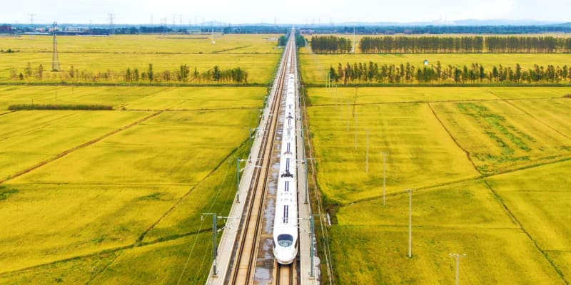 Čínská vysokorychlostní trať mezi rýžovým polem.
