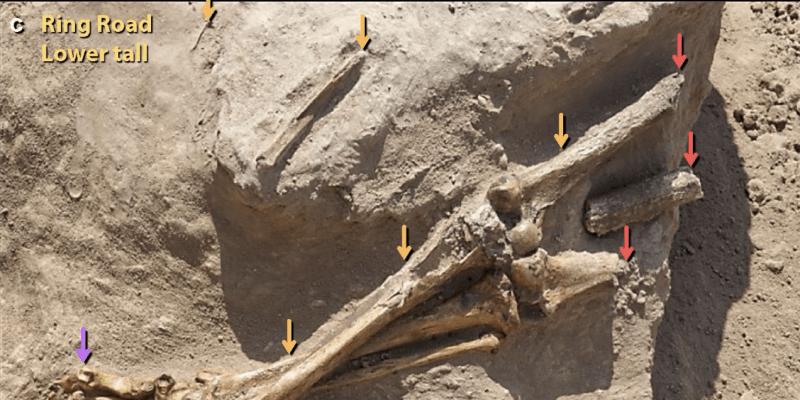 Nalezená část lidské kostry z oblasti Tall el Hammam
