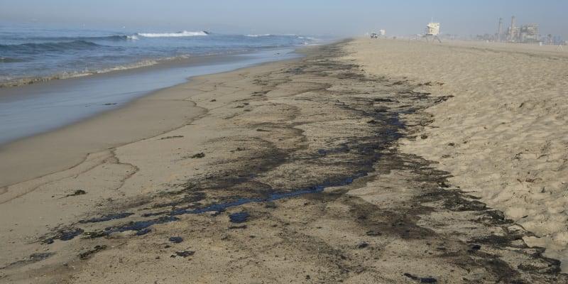Ropná zhouba už dorazila na pobřeží.