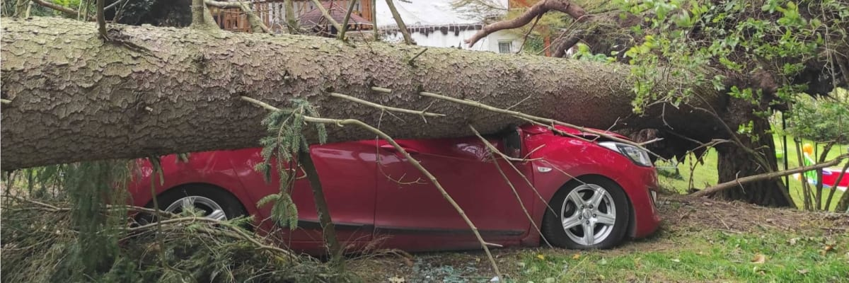 ON-LINE: Ničí střechy, láme stromy a komplikuje dopravu. V Česku řádí silná vichřice Ignác