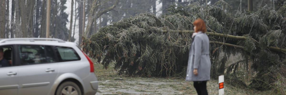 Ničí střechy, láme stromy a komplikuje dopravu. V Česku řádí silná vichřice Ignác